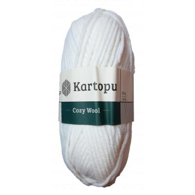 Příze COZY WOOL - K010 bílá